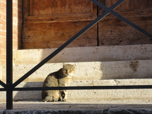 Morning watch in a Sienese village