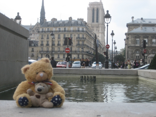 bear in Paris