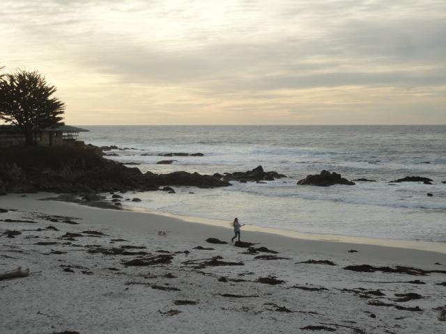 See Spot run. See Spot run on Carmel beach.